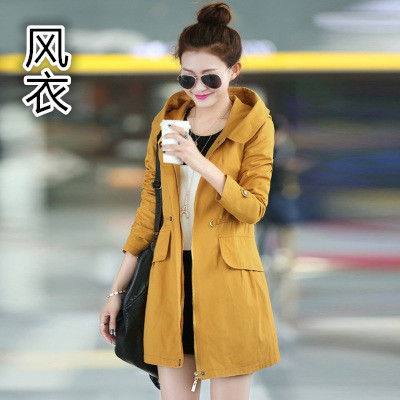 Color classification: Yellow (spring and autumn coat without velvet)