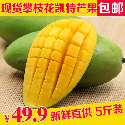 芒果 攀枝花凯特生芒果 新鲜芒果青芒果凯特大芒果新鲜水果 5斤装