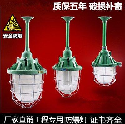 Las luces LED 100W1 taller de iluminación a prueba de explosión de las luces de la planta la planta de luz con lámparas lámparas de araña de almacén