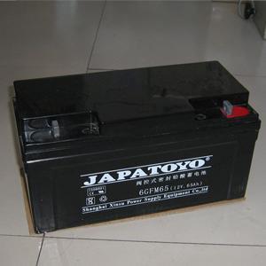 Toyo battery 12V-65AHUPS power supply \EPS DC screen battery 6GFM65 warranty for three years