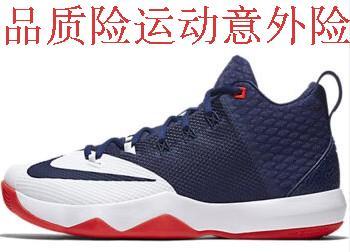 規格品のナイキの紳士靴2017バスケットボールシューズ852413-001 /606/(676 /ひゃく/ 441 / 616 / 110