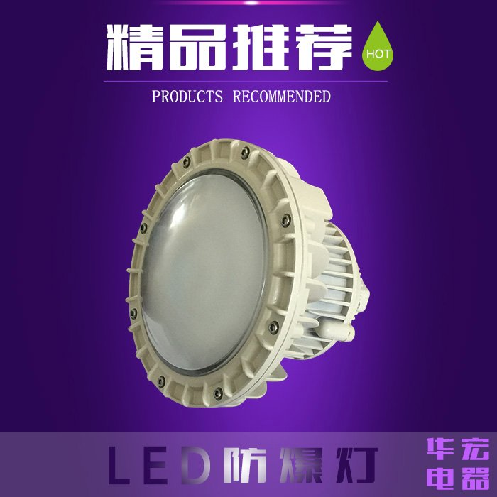 Special flameproof LED explosion-proof lamp 100W80W anti riot energy saving lamp for workshop 60W50W30W