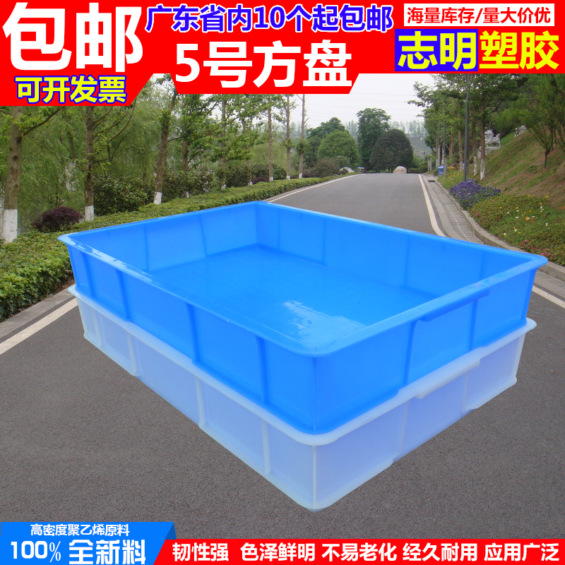 The new plastic household square rectangular tray parts box food box seafood frozen disc plastic hot Pearl