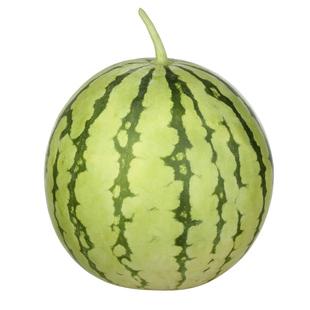 西瓜种子早佳8424甜王麒麟无籽瓜高产巨型特大黑美人礼品西瓜种籽