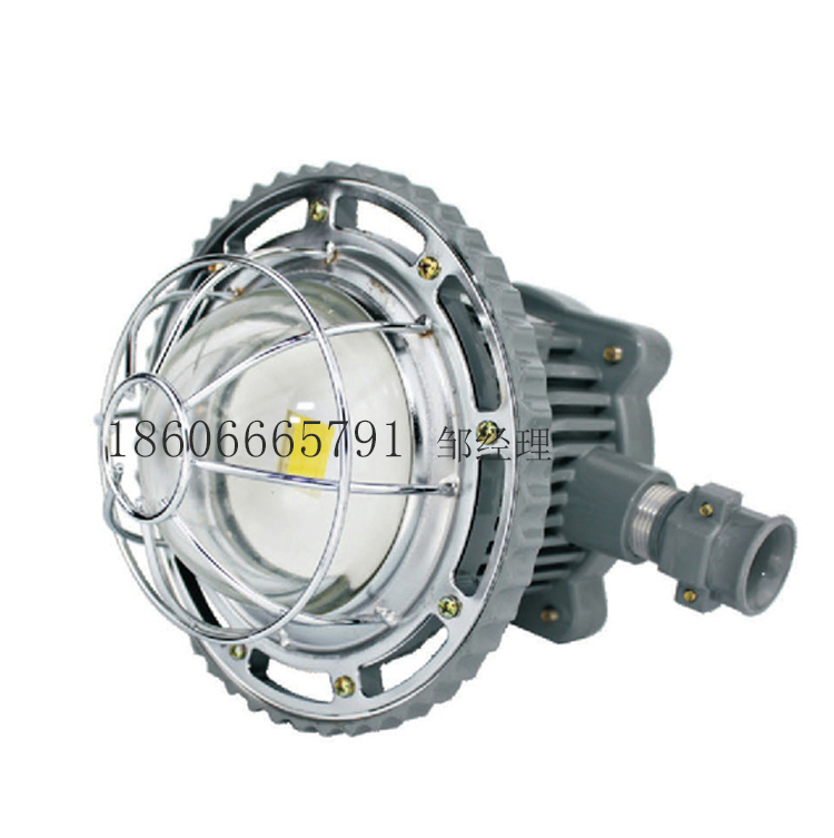 DGS30 / 127L LED โคมไฟถนนไฟ 30W การระเบิดเหมือง