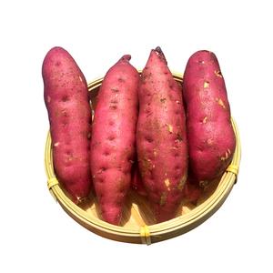 【现挖现发】海南澄迈桥头富硒地瓜金手指板栗薯红薯番薯5斤装