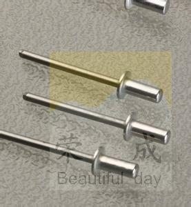 Countersunk head iron rivet core countersunk head rivet 3.2*7-6.4*16 professional car Tierra