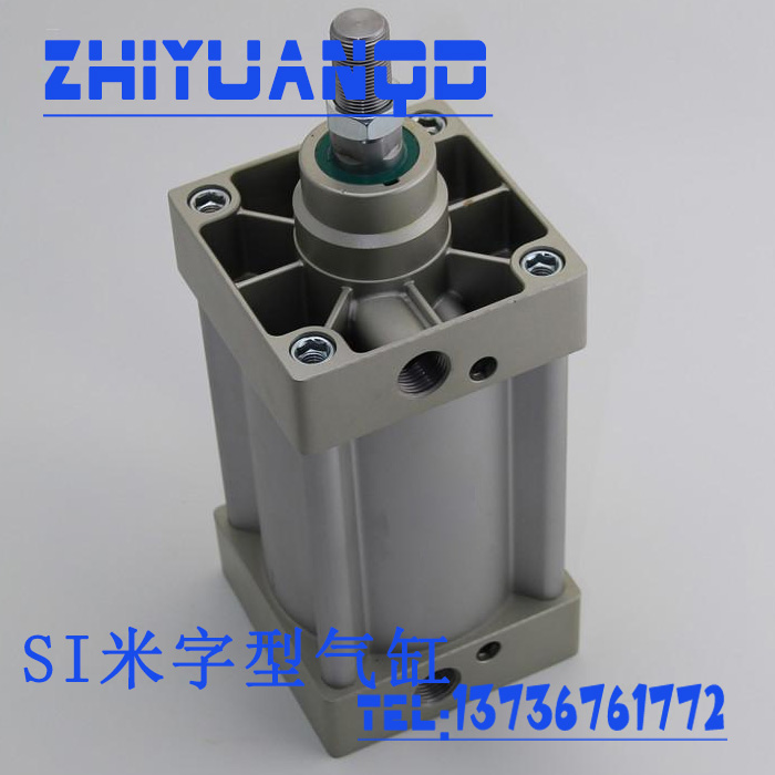 SU100-25-100-1000 non di tipo Standard possono essere personalizzati con sospensioni Cilindro personalizzato di tipo magnetico di tipo doppio e regolabile.