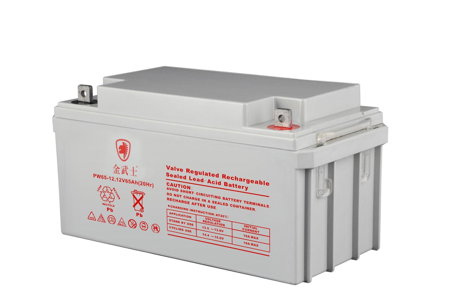 Gold warrior original genuine UPS power maintenance free battery 12v65ah fire engine standby battery