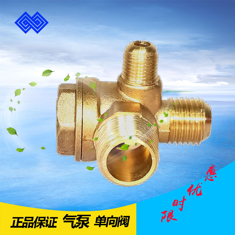 Air pump fittings, pneumatic one-way valve, check valve automatic controller, air controlled one-way valve gas