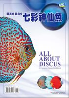 Fish collection 1 discus Pisces NEW