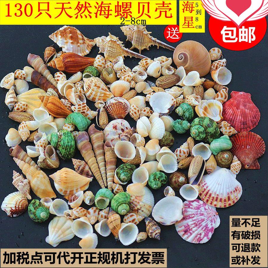 store ocean halskæde stil mandlige husstand skal gøre store mug, ren håndlavede skaldyr konkylie søstjerne