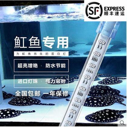 Lampe del Aquarium aquarium à double rangée d'éclairage del de phare de plongée Bleu et blanc de cristal de lampe étanche spécial scléropage Stingray