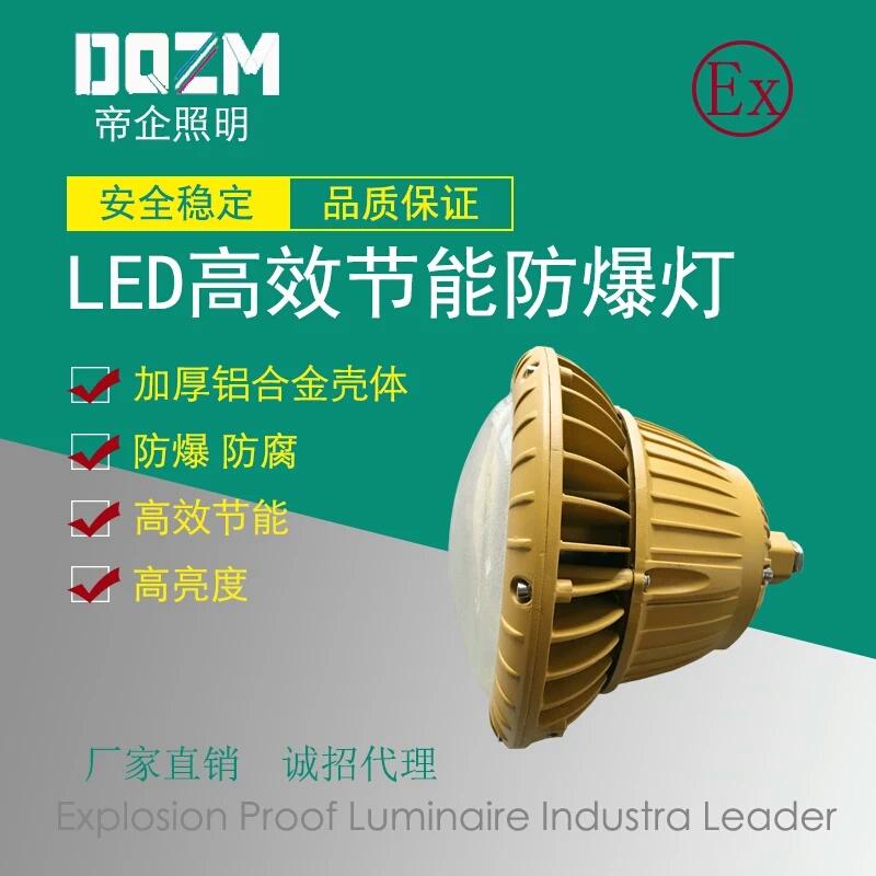 الفقرة _ Huarong مقاومة للانفجار مصباح الصناعة الصيدلانية _ _ صيانة مجانية الصمام ضوء واقية من الانفجار _ الوزن الصافي 6KG 100W