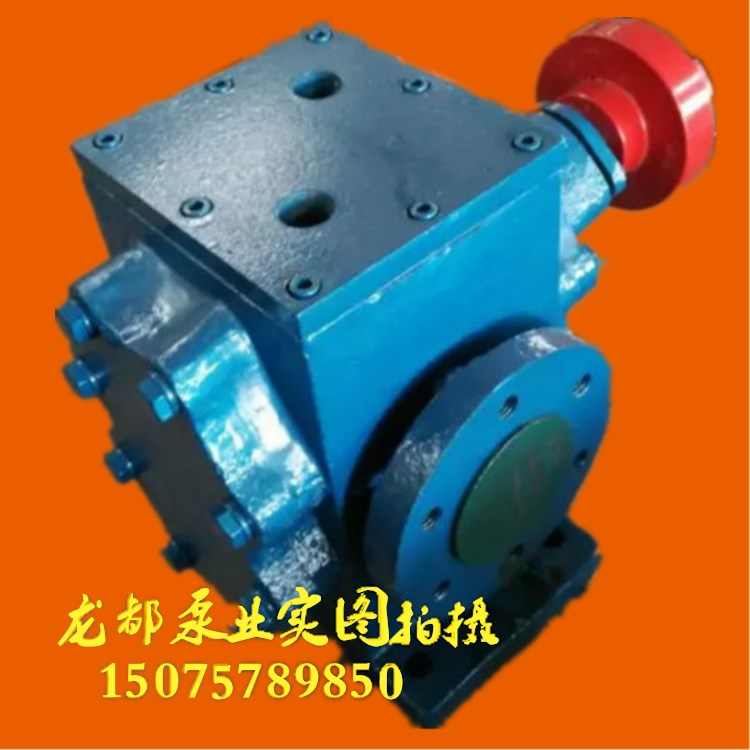 BW58/0.28 insulated gear pump / insulation jacket pump, temperature / humidity rosin pump / asphalt insulation pump / paraffin pump