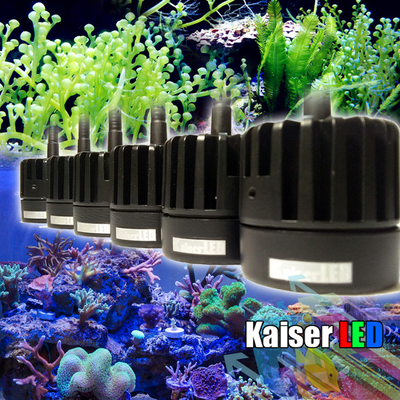 Kaiser LED 专业藻缸 补光 ATS 植物夹灯 机械臂 神灯 海水珊瑚