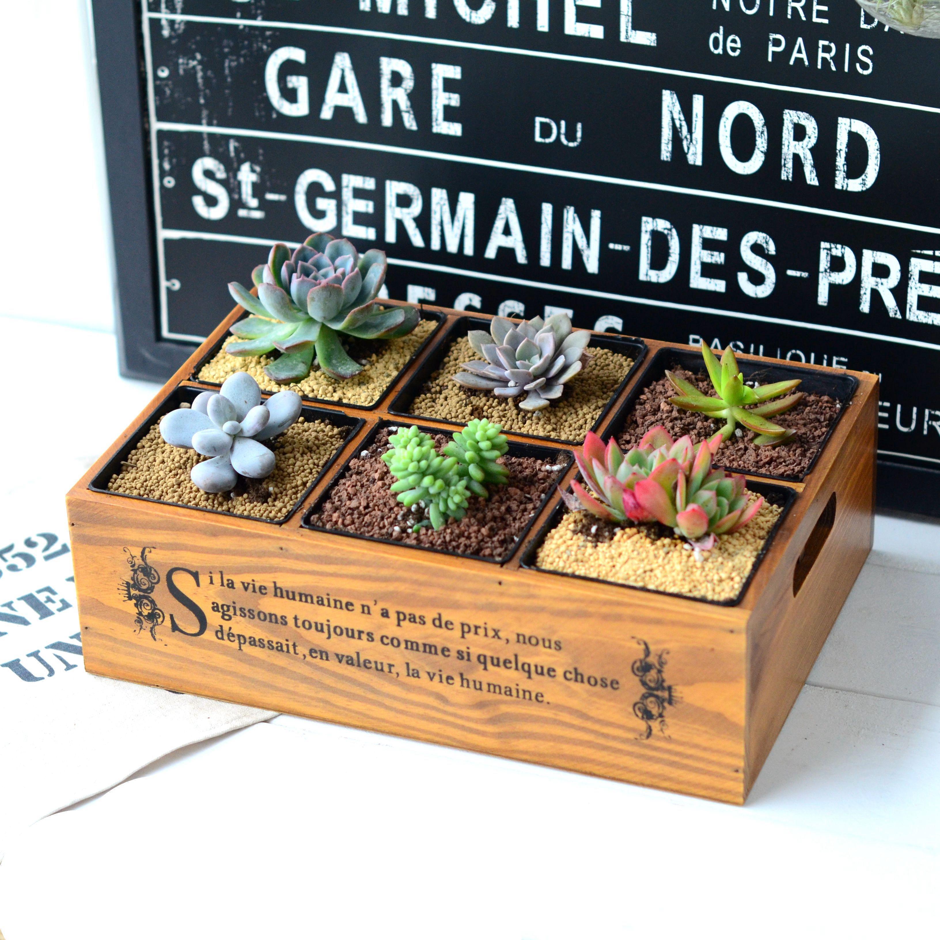 六格收纳盒创意木质多肉花盆花器-多肉花盆网