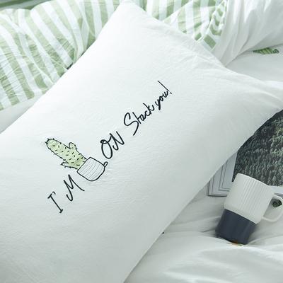 水洗棉四件套全棉纯棉刺绣仙人掌小清新简约双人被子床上用品