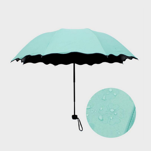 晴雨傘女折疊兩用遮陽傘創意遇水開花