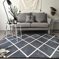 欧式潮牌简约地毯进门垫地垫