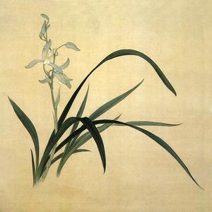 Nổi tiếng cổ thêu nghệ thuật thêu thêu diy kit người mới bắt đầu handmade sơn trang trí phong lan màu vàng 25 * 25 CM