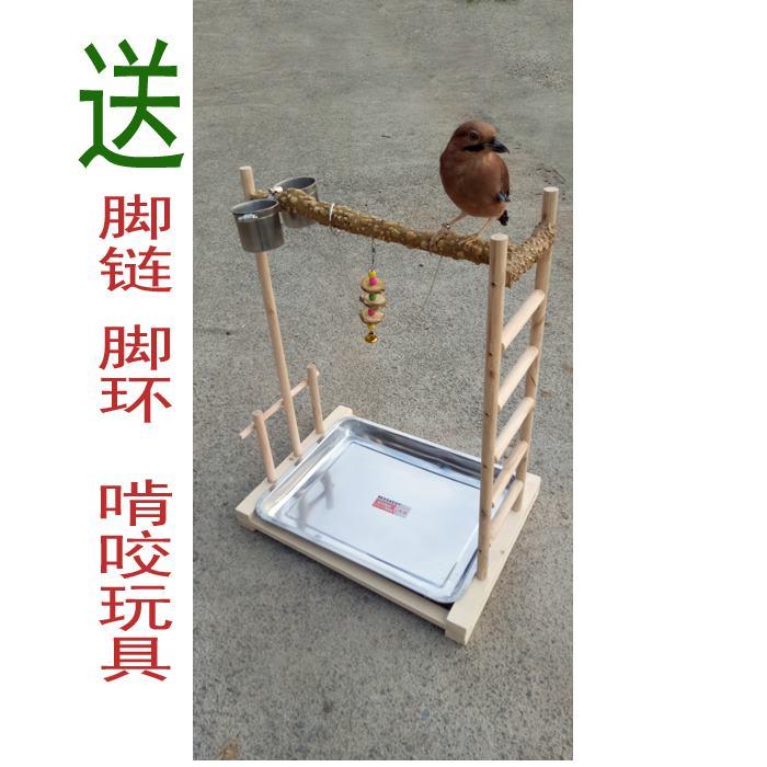 Xem máu bay, đứng chim bằng gỗ, lồng chim, đứng, đứng cực, đứng tiêu, và chim vẹt