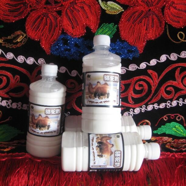 4 jins of camel milk kazak in xinjiang camel camel milk milk pure milk straight along abundant air fresh pasture for