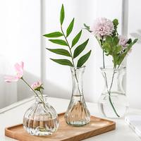 Гидропонная креативная стеклянная ваза Нарциссное растение Гидропонная емкость Ваза Зеленый укроп Прозрачный горшок Гиацинт Бутылка