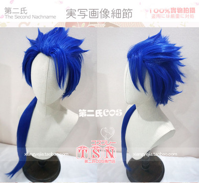 taobao agent The Second Fate Grand Order Old Gun Hero Blue COS Wig 423