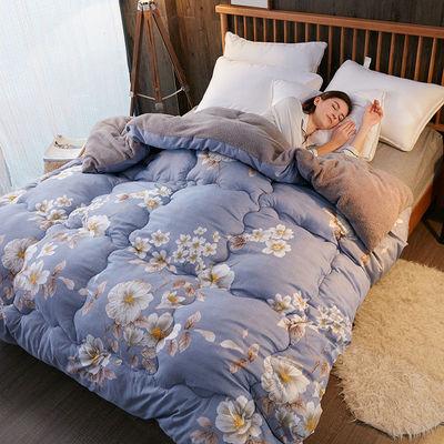 羊羔绒被子加厚被芯春秋冬被单双人空调被夏凉宿舍褥垫被4-10斤