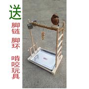 Xem ruồi máu, hạt tiêu, chân chim gỗ, lồng chim, chân đế, cột ga, vẹt đứng, và nguồn cung cấp chim