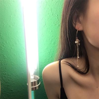 欧美极简约长款流苏圆圈紫水晶耳环复古串珠优雅韩国耳饰品女